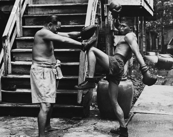 muay thai trening Katowice sztuki walki